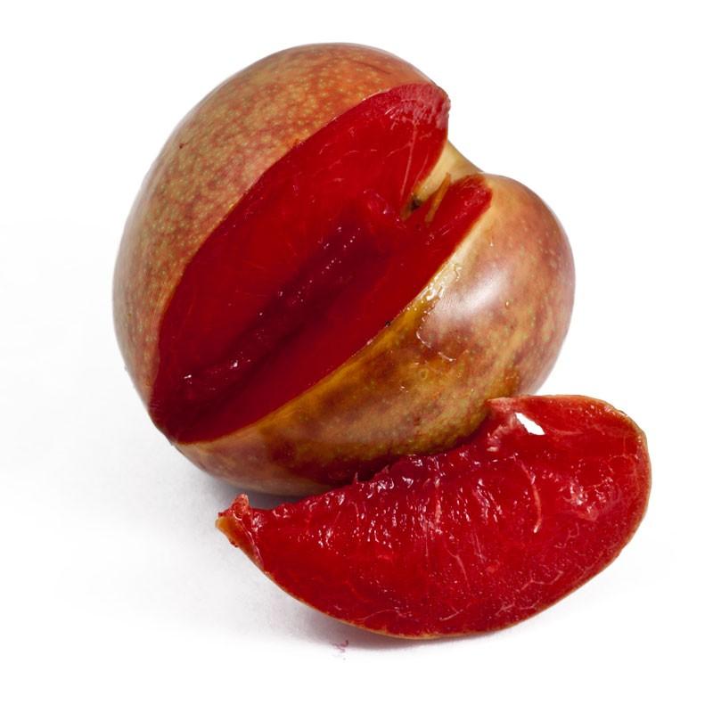 Plumcot Vs Pluot Plum x apricot = plumcot